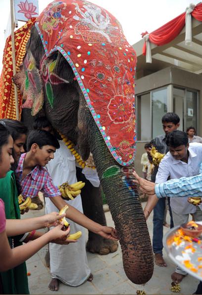 Фестиваль Ганеши в Ахмедабаде
