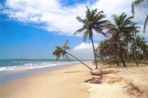 Пляж Маджорда, Гоа