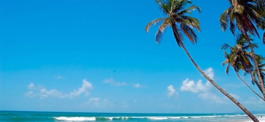 Погода в Гоа по месяцам